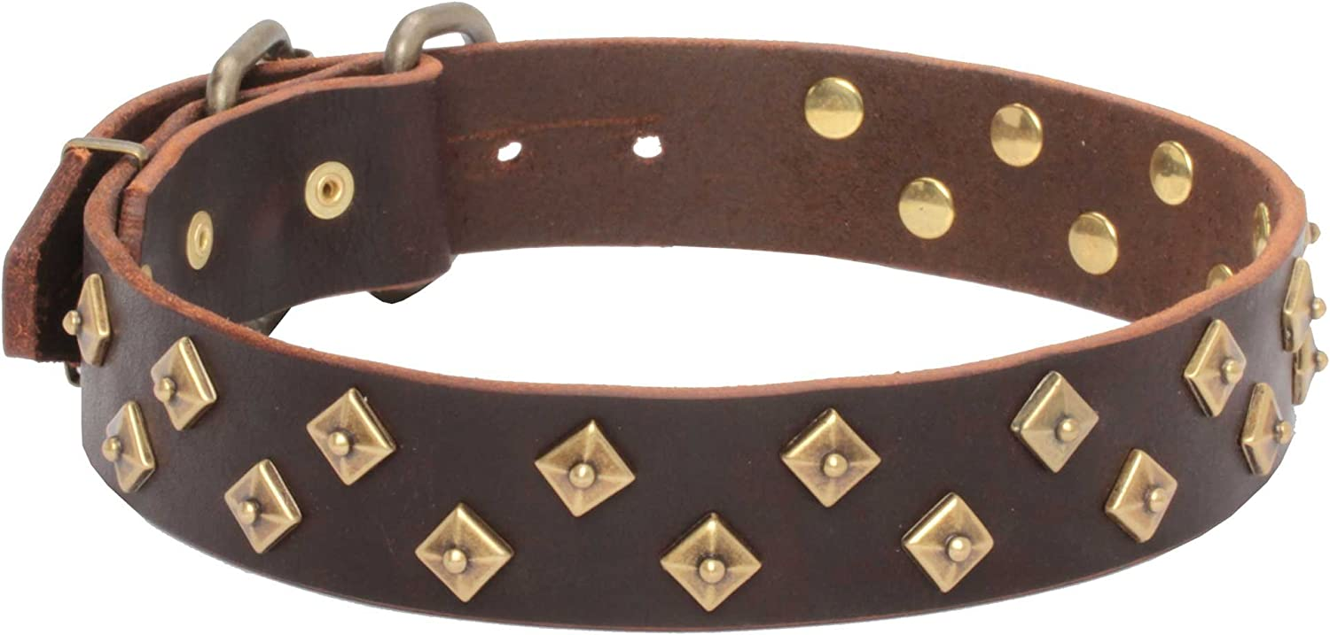 """18 inch Brown Leather Dog Collar with Brass Pyramids  """"Haute Couture""""  1 1 2 inch (40 mm) wide"""