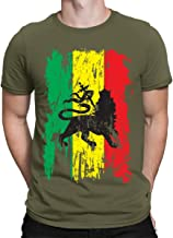 SpiritForged Apparel Distressed Rasta Flag Men's T-Shirt