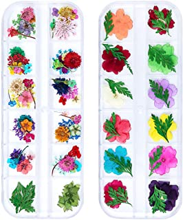 iFancer 98 Pcs Nail Dried Flowers 52 Colors 3D Nail Art Real Flowers Nature Dry Petals Leaves Decor for Nail Art Design Manicure Decoration