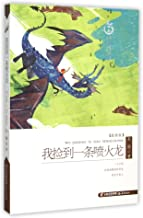 HEYDAY CHINA Original Children's Literature Series: I Picked up a Firedragon (Latest Edition) (Chinese Edition)