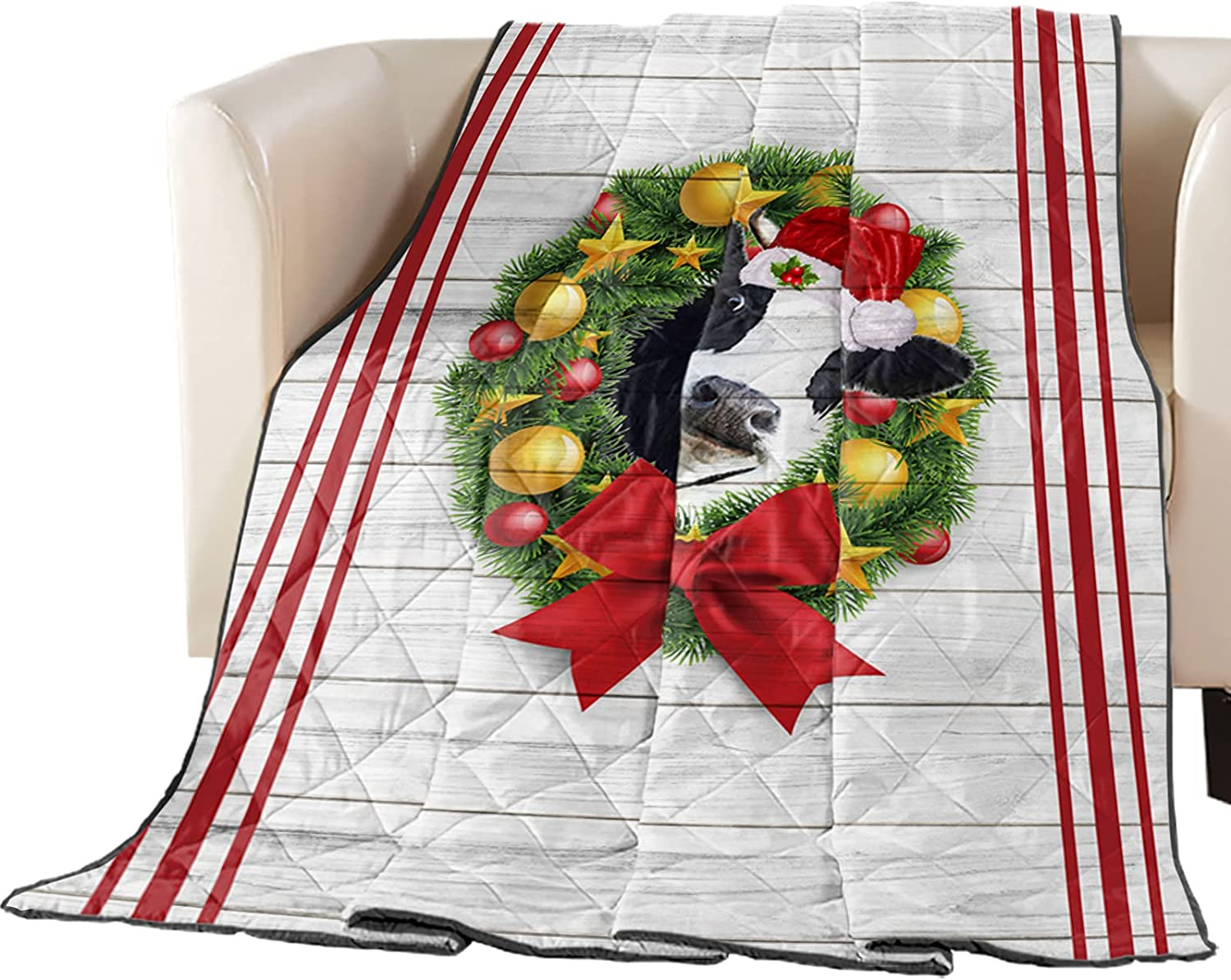 Down Alternative Reversible Comforter Quilted Rapid rise Ranking TOP15 Cotton Fill Throw