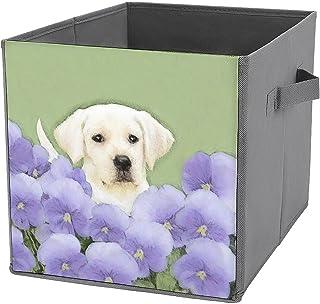 Cubes de rangement pliables en toile pour chiot labrador retriever - Grande capacité - Panier de rangement pliable et pani...