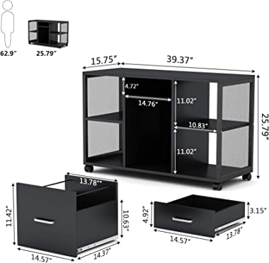 Mobile File Cabinet 2-Drawer Filing Cabinets Organizers, Tribesigns Modern Lateral Mobile Letter Size File Storage Cabinets P