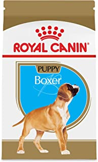 Best royal canin bernese mountain dog Reviews