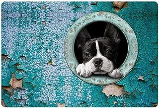 HUGS IDEA Cute Boston Terrier Entry Way Outdoor Doormat Non Slip Floor Mat for Kitchen Living Room Blue