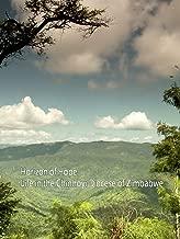 Horizon of Hope: Life in the Chinhoyi Diocese of Zimbabwe