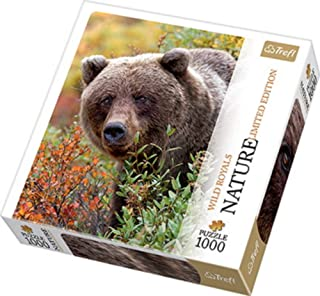 Puzzle Grizzly, Alaska, USA - Nature Limited Edition Wild Royals, 1000 Pieces Jigsaw by Trefl