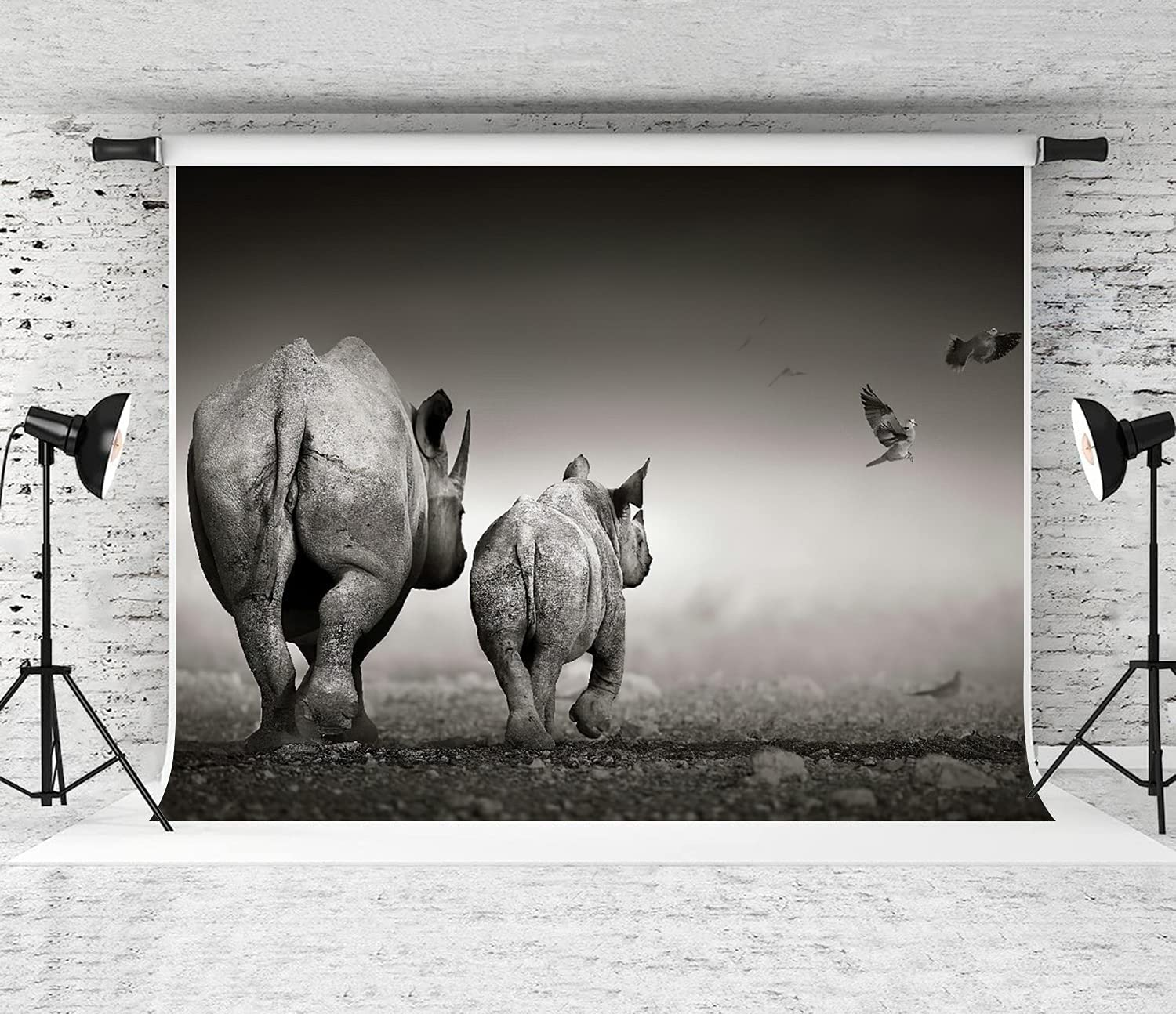 famous DYCBNESS Photography Safety and trust Background Black Rhino Photo Calf with Cow