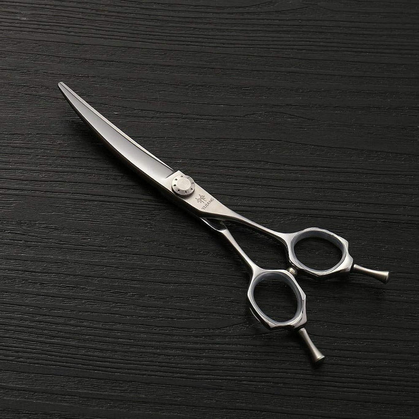 生む追跡遷移440Cステンレス鋼理髪はさみ、6.0ファッション散髪はさみ、ヘアスタイリストの動向 ヘアケア (色 : Silver)