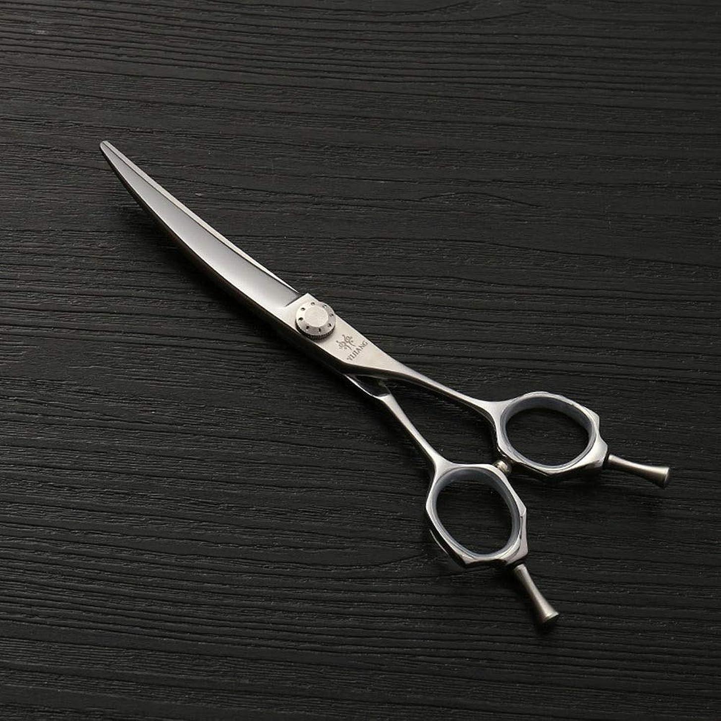 蜜慰め腹440Cステンレス鋼理髪はさみ、6.0ファッション散髪はさみ、ヘアスタイリストの動向 モデリングツール (色 : Silver)