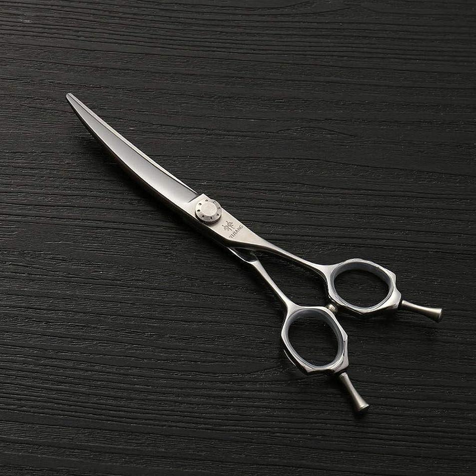 平和な摂動オークション440Cステンレス鋼理髪はさみ、6.0ファッション散髪はさみ、ヘアスタイリストの動向 モデリングツール (色 : Silver)