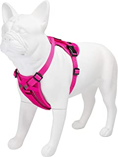 Best Pet Supplies Voyager Freestyle 4-in-1 Dog Harness - Patent Pending Adjustable Webbing Harness with Removable Padding for Small to Large Dogs (Fuchsia, X-Small)