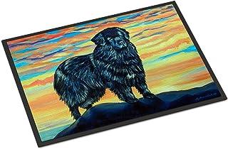 Caroline's Treasures 7518MAT Newfoundland Indoor Outdoor Mat 18x27 Doormat, 18H X 27W, Multicolor