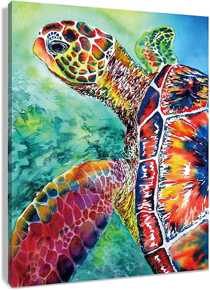 Amazon Com Hvest Sea Turtle Canvas Wall Art Watercolor Underwater Animal Artwork Ocean Painting For Living Room Bedroom Bathroom Wall Decor Stretched And Framed Ready To Hang 12x16 Inches Posters Prints