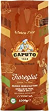 Best caputo gluten free pizza dough recipe Reviews