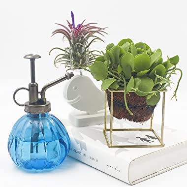 """Ebristar Plant Mister, 6.5"""" Tall Vintage Style Decorative Glass Water Spray Bottle with Top Pump Small Watering Can (Blue"""