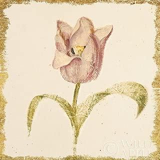 Posterazzi Collection Vintage Blue Parrot Tulip Crop Poster Print by Cheri Blum (24 x 24)