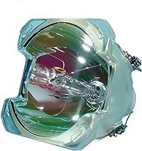 LYTIO Economy for Optoma BL-FS300B Projector Lamp (Bulb Only) BLFS300B