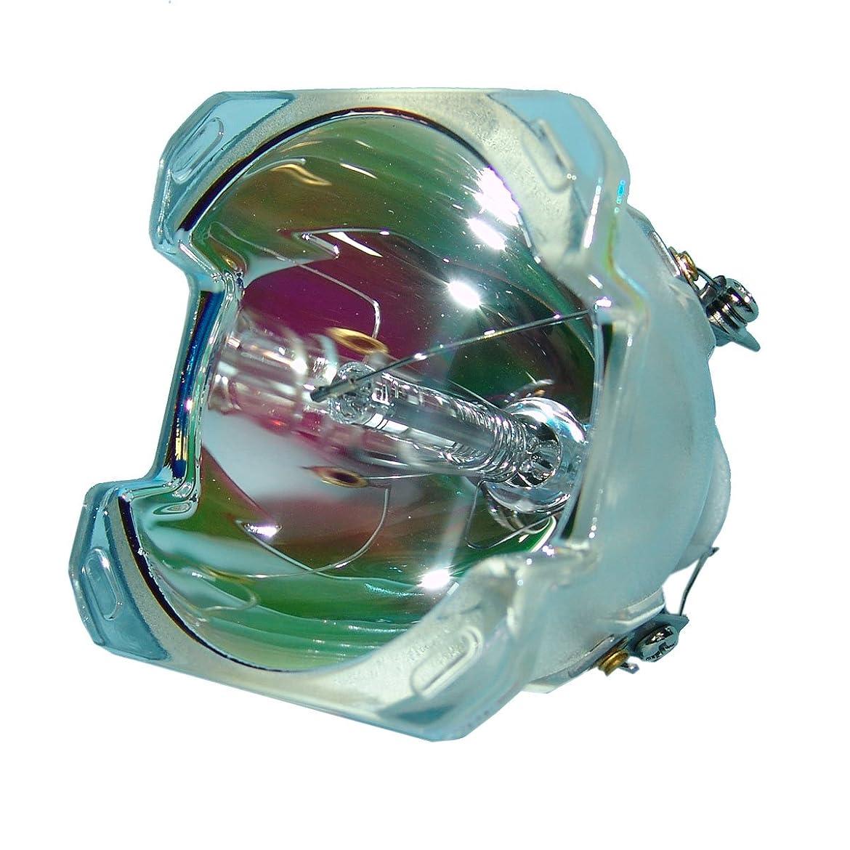 適合しました護衛国際SpArc プロジェクター交換用ランプ 囲い/電球付き Optoma EX850用 Economy