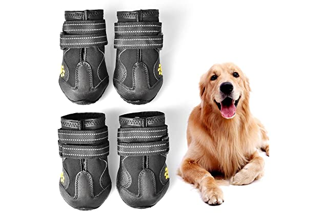 2d47dad4e2f Best running shoes for dogs | Amazon.com