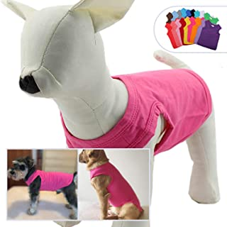 cheap dog clothing online