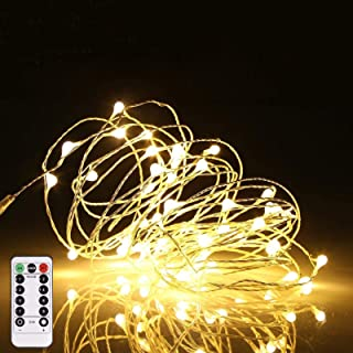 Reasin 2 Pack 33ft 100LED Silver Wire Fairy String Lights 8 Modes LED String Lights USB Powered with Remote Control , Warm...