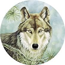 Thirstystone Stoneware Coaster Set, Lone Wolf
