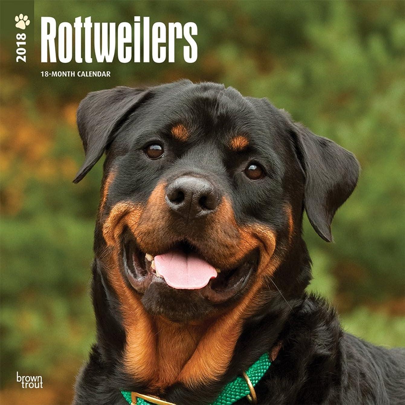 寛大さ克服する外交問題Rottweilers 2018 Calendar