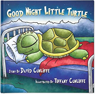 Good Night Little Turtle