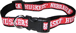 Best huskers dog collar Reviews