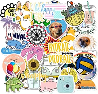 Mai Zi Stickers for Water Bottles 50 pcs Vsco Stickers Laptop Stickers Pack Cute Aesthetics Stickers for Teens Girls (50 Pieces series-16)
