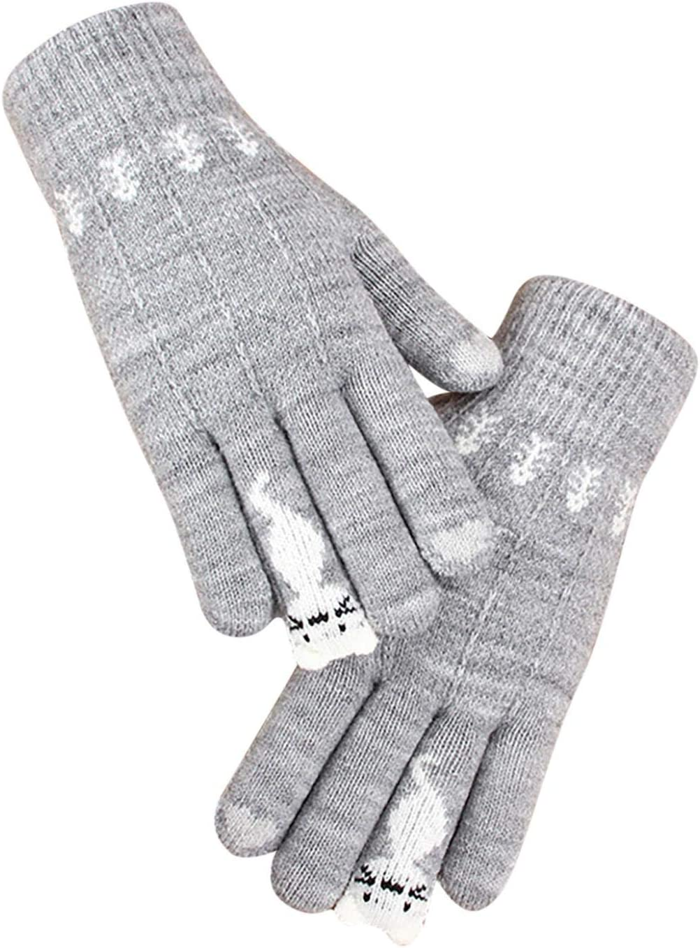 Baoshu Ladies Winter Kitten Glove Single Layer Warm Thick Knitted Touch Screen Gloves Full Fingers Cold-Proof Mitten (Gray)