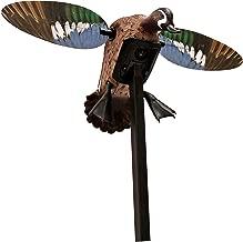 decoy blue heron