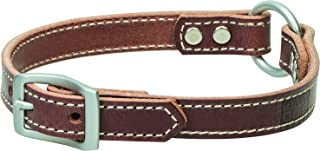 Terrain D.O.G. Harness Leather Ring-in-Center Dog Collar