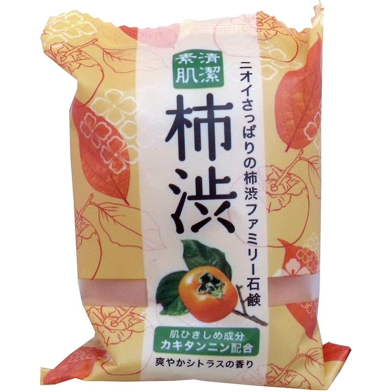 洗う恐れ結核ペリカン石鹸 ファミリー柿渋石鹸(1個) ×2セット