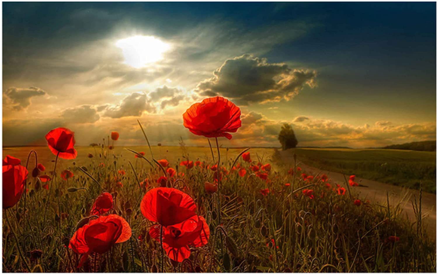 Red Poppies Modern Gorgeous Flowers Canvas Posters Max 84% OFF Paintings W and Prints