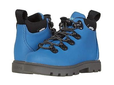 Native Kids Shoes Fitzsimmons Treklite (Toddler/Little Kid) (Storm Blue/Dublin Grey) Boy