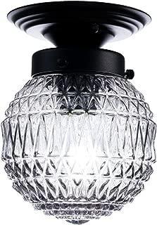 Best globe ceiling light fixture Reviews