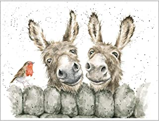 Best Donkey Greeting Cards of 2020 – Top Rated & Reviewed
