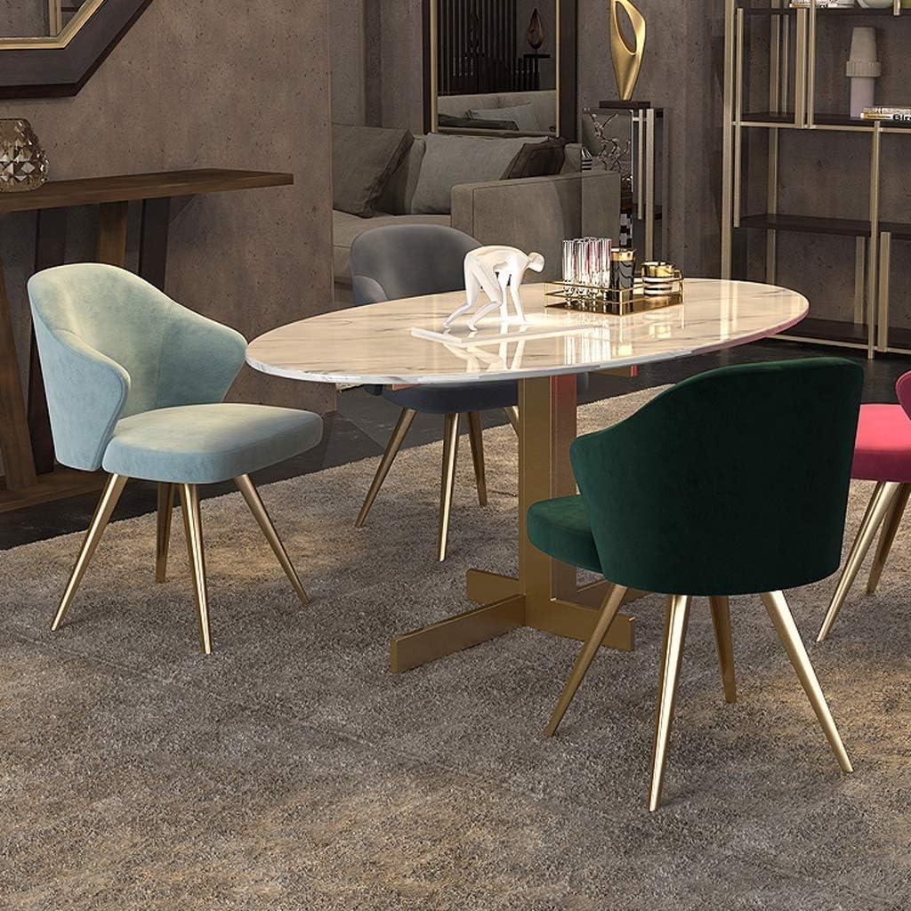 Président WGZ- Chaise de Salle, Chaise de Bureau Simple, créative Dossier, Chaise Loisirs, Maison Adulte Chaise de Salle Simple (Color : Light Blue) Green