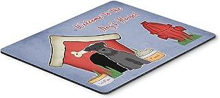 Caroline's Treasures Dog House Collection Miniature Schnauzer Mouse Pad, Multicolor, 7.75x9.25 (BB2805MP)