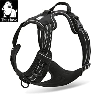 Best true love no pull harness Reviews