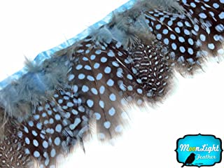 Moonlight Feather | 1 Yard - Baby Blue Guinea Hen Plumage Feather Trim Wholesale Supplier Costume, Craft, Halloween Feathers