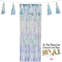 Shimmering Iridescent Doorway Fringe Curtain and Large Tassel Garland Bundle by Curated Nirvana