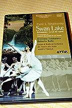 Pyotr I. Tchaikovsky: Swan Lake / Schwansee / Le Lac des cygnes / Choreography by Vladmir Burmeister and Lev Ivanov / Corpo di Ballo ed Orchestra [European DVD Region 0 NTSC]
