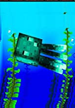 How Glow Squids Got Their Glow - Minecraft, The Bad & Incredible Book (Cool ebook) of Minecraft