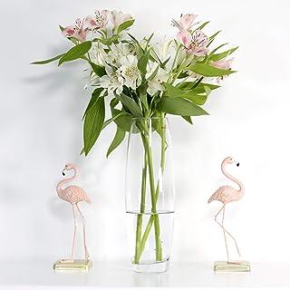 Saidan SD Florero Vidrio Cristal de Forma Abombada y Liso, Ideal para la Decoración del Hogar, Plantas, Flores, Ramos (28 cm)