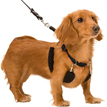 Dog Halter - Non-Pull No-Choke Humane Pet Training Halter Harness, Easy Step-in Vest Collar Halter for Control, Detachable Restraints & Sherpa Sleeves, Patented Dog Pull Control Technology by Sporn