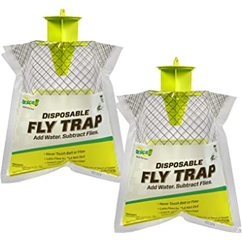 ghdonat.com Fruit Fly Traps for Kitchen Dwcom 20 Pack Sticky Fly ...