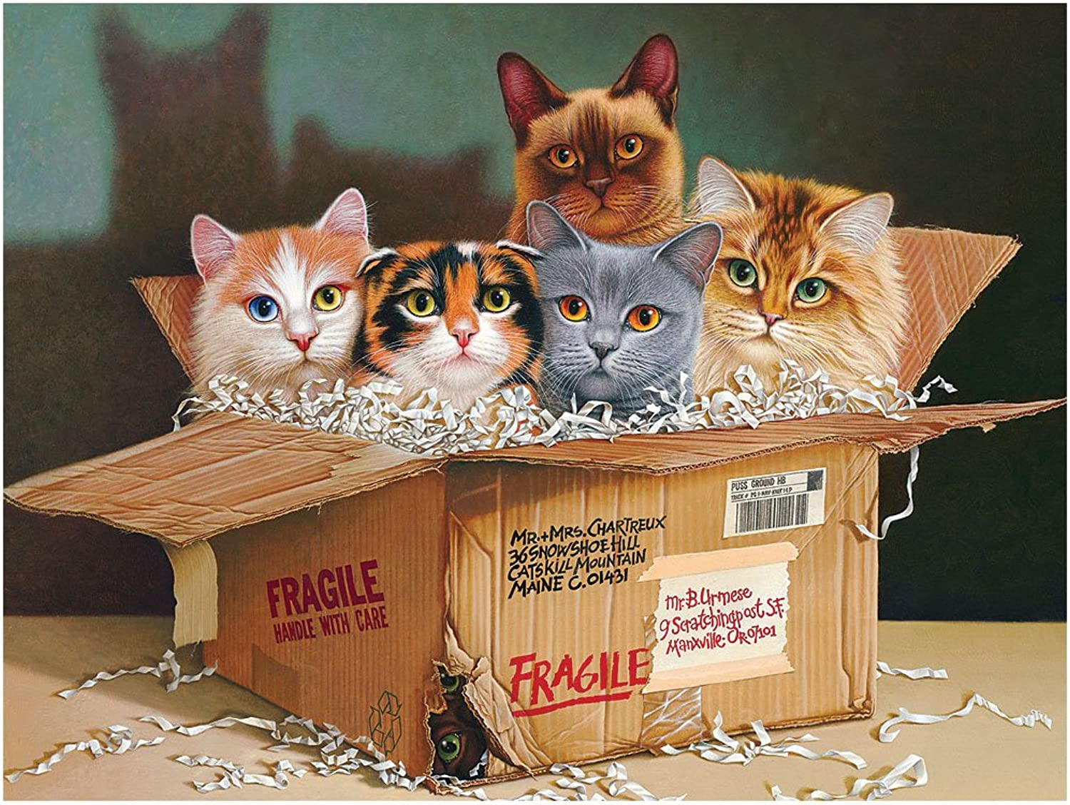 Cobble Hill Six Pack Jigsaw Puzzle, 500Piece by Cobble Hill